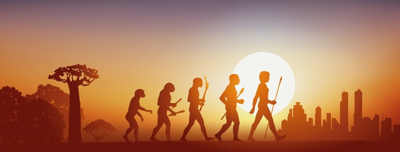 Evolution – Is there a direction?